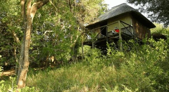 Treehouse at Marcs camp