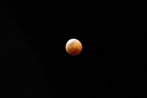 width=300 height=200></a><p id=caption-attachment-11268 class=wp-caption-text>Full lunar eclipse and also blood moon</p></div><p></p><h3>Day 5: Nata and Elephant Sands</h3><p></p><p>After breakfast, we headed to Nata Bird Sanctuary. We had a quick stop in Francistown to buy some refreshments. It is about a four hour drive to Nata Sanctuary. In the Nata Sanctuary, we had the privilege of seeing the spectacular salt pans. These pans are about 15km² which is amazing to see! At the pans we had a delicious lunch and a glass of wine. The ambiance was perfect.</p><p></p><div id=attachment_11248 style=
