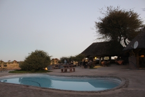 width=300 height=200></a><p id=caption-attachment-11270 class=wp-caption-text>Pool area</p></div><p></p><p>We had one amazing buffet dinner and while eating, elephants were playing in the background. After dinner we made our way to the bonfire with a glass of wine and watched the elephants literally a few meters from us.</p><p></p><div id=attachment_11269 style=