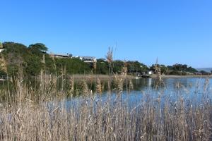 lagoon-at-wilderness