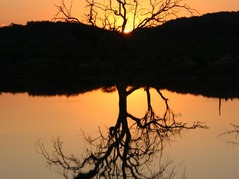 Beautiful sunset in Madikwe