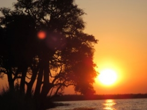 chobe-river-sunset-view