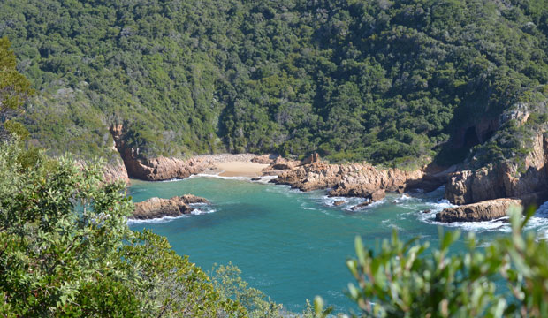Beautiful Rocky Coast of Knysna along the Garden Route in South Africa