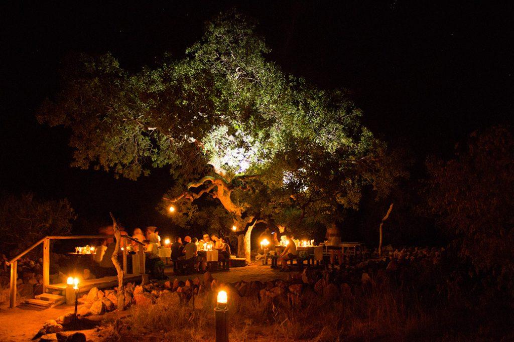 Marula tree boma