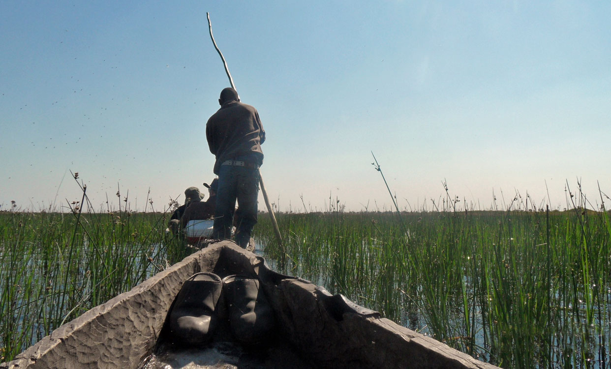Enjoying the peace and tranquility along the Okavango Delta