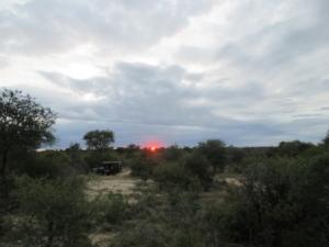 Sunset Balule Game Reserve