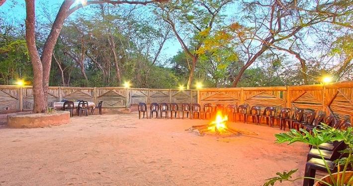 Kruger Budget Safaris - Safari With Us