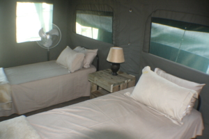 Safari Tent Manyeleti